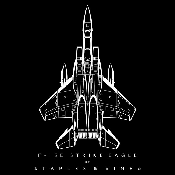 F-15E Strike Eagle aircraft aviation T-shirt graphic by Staples and Vine Ltd.